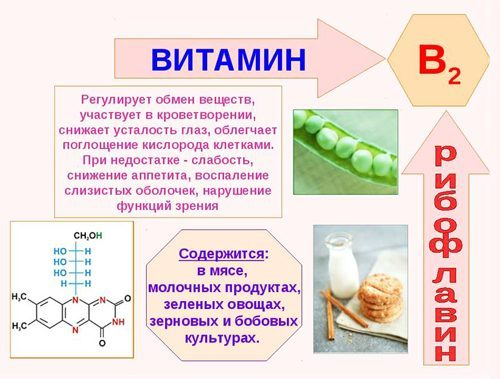 vitamin-b2-1