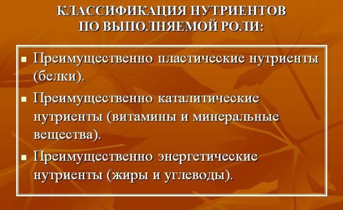 vitaminy-pamyat-detyam-3