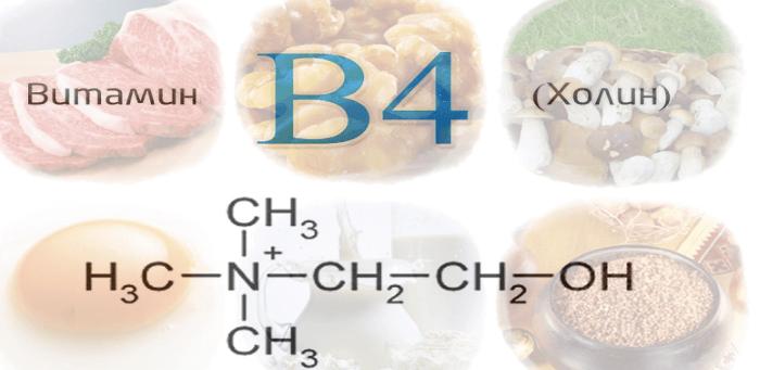 vitamin-b4-1
