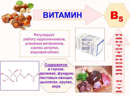 vitamin-b5-1